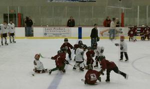 Rochester Youth Hockey Termites Sponsor