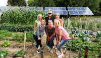 Retail Construction Giving Garden