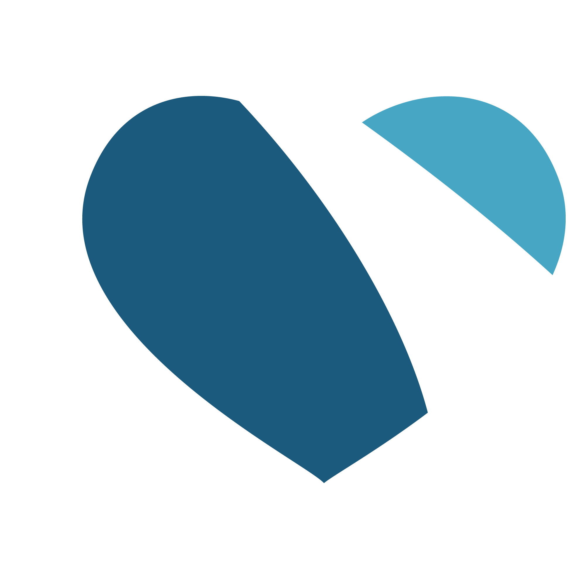 NRP-Heart-Icon-rev1